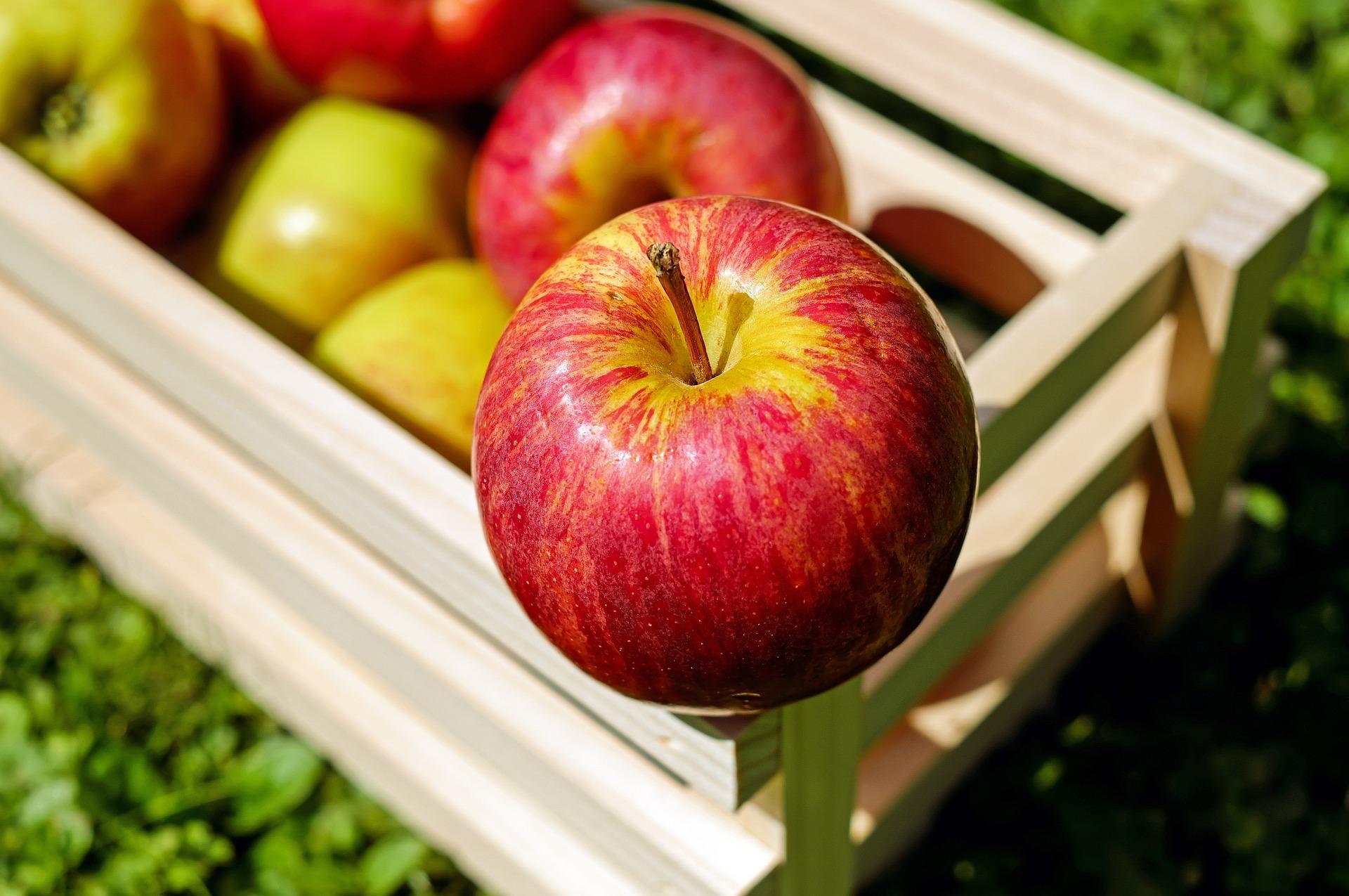 Kako napraviti jabučni ocat Ocat od jabuka