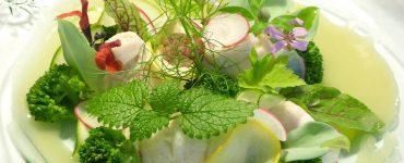 Kako povecati apetit Biljke koje povecavaju apetit