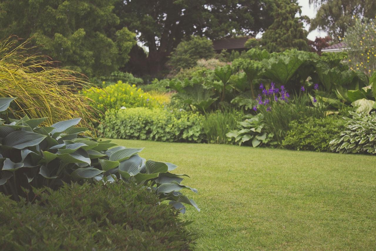 kako-i-u-koje-godisnje-doba-zasaditi-grmove-kako-hr