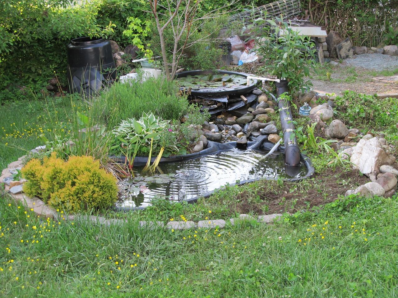 kako-isplanirati-i-izraditi-jezerce-u-vrtu-u-jednom-danu-kako-hr