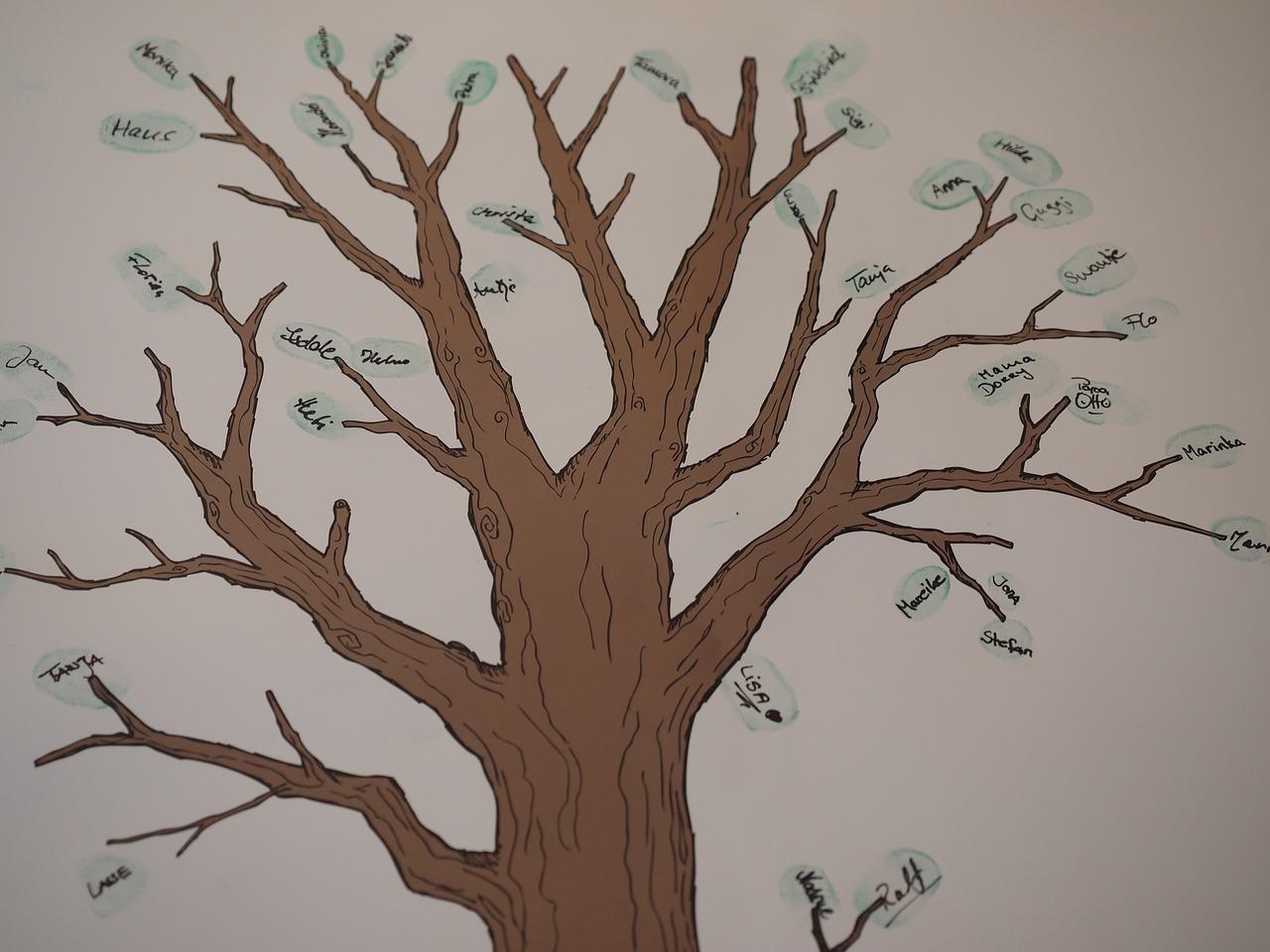 kako-napraviti-obiteljsko-stablo-izrada-obiteljskog-stabla-kako-hr